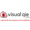 Logo Visualqie